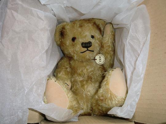 teddy of witney